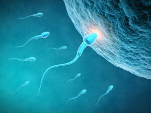 Shkaqet e infertilitetit, kosovarët dyshohet se kanë cilësinë më të dobët të spermës në rajon